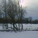 Pesadelos de uma Noite de Inverno – Parte III