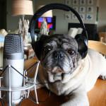 Omega Debate – Inicio de um Podcast
